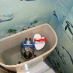 Чем мыть туалет – ТОП средств для чистки