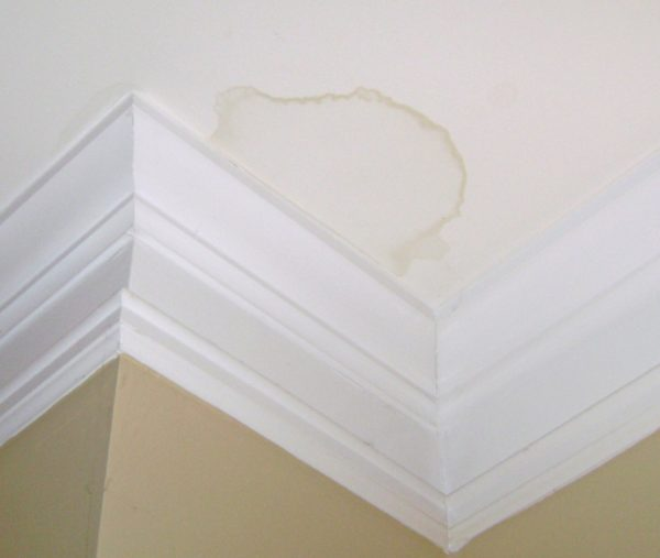 Пятна на потолке – одна из причин сменить побелку