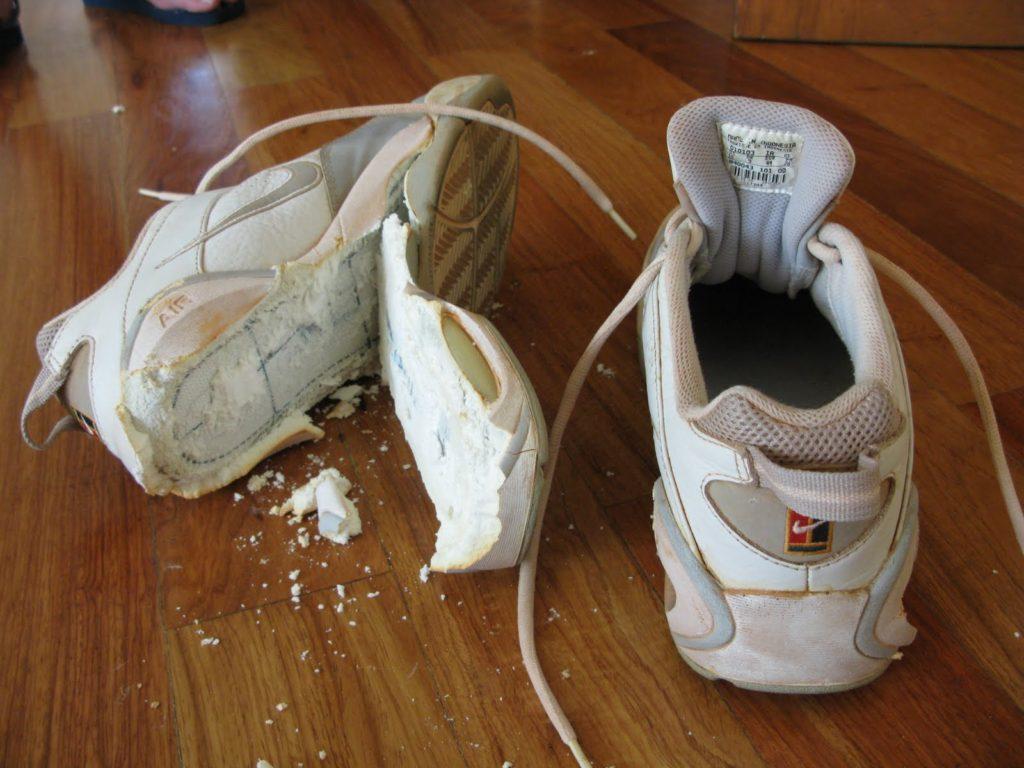 Можно ли стирать замшевые и кожаные кроссовки в стиральной машине