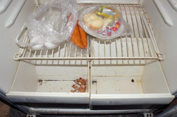 Запах в холодильнике. Почему он появился? Может быть, устройство давно не мыли?