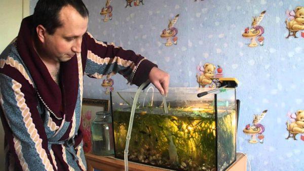 Будем учиться чистить аквариумы