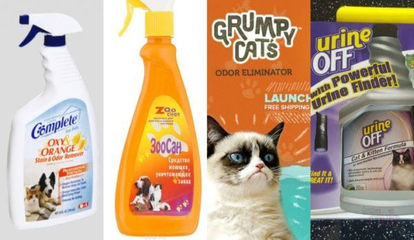 Средства, которые выводят кошачью мочу